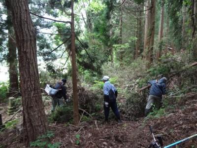 雑木の整理