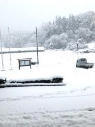 降り続く雪。。