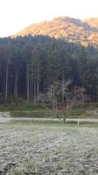 初霜30.11.2