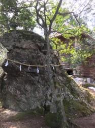 龍岩神社春祭り4