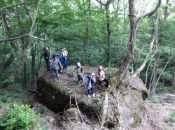 巨石にまたがる木と子どもたち